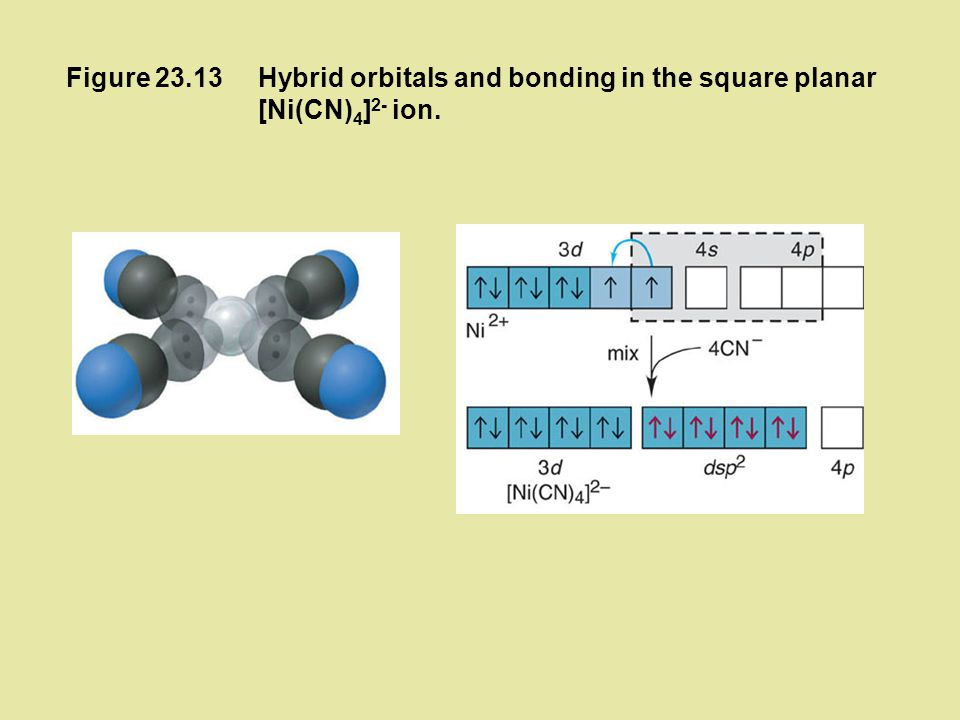 Figure 23.13 Hybrid orbitals and bonding in the square planar [Ni(CN)4]2- ion.